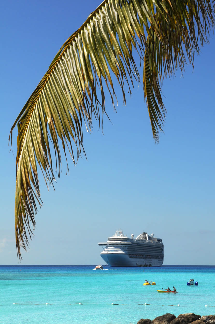 A Cruise Review
